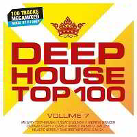 Deephouse Top 100 Vol.7 [2CD]