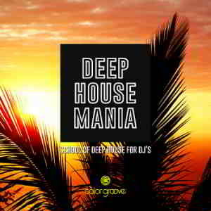 Deep House Mania [School Of Deep House For DJ's] (2019) скачать через торрент
